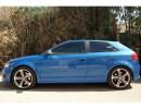 Audi A3 8P Praguri Monor