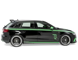 Audi A3 8V Praguri NewLine