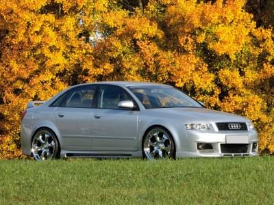 Audi A4 B6 / 8E RX Seitenschwellern