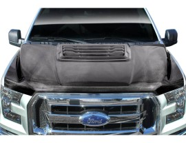 Ford F150 R-Look Carbon Fiber Hood