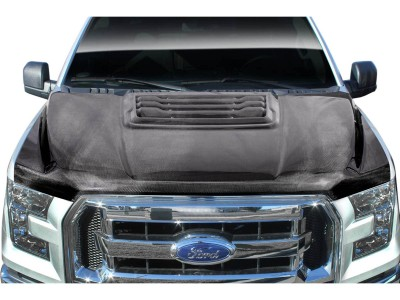 Ford F150 R-Look Carbon Fiber Hood