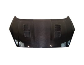 Ford Fiesta MK7 Facelift RS-Look Carbon Fiber Hood