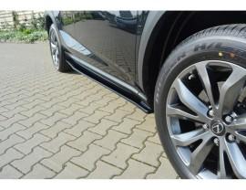 Lexus NX Master Side Skirt Extensions