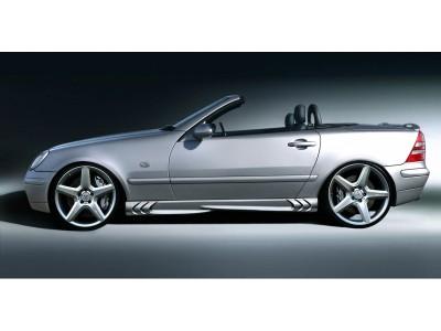 Mercedes SLK R170 Power Seitenschwellern