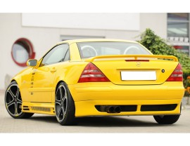 Mercedes SLK R170 Recto Rear Wing