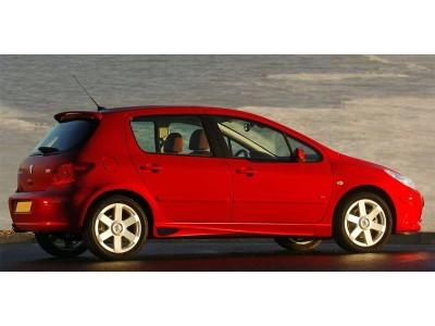 Peugeot 307 A2 Seitenschwellern